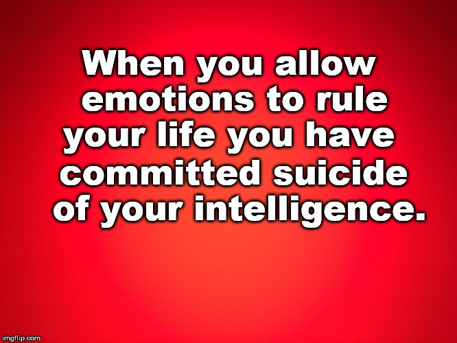 Red Background | When you allow emotions to rule your life you have committed suicide of your intelligence. | image tagged in red background | made w/ Imgflip meme maker