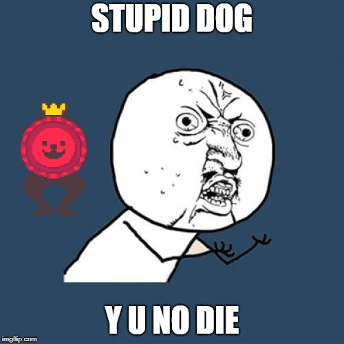 Y U No Meme | STUPID DOG Y U NO DIE | image tagged in memes,y u no | made w/ Imgflip meme maker