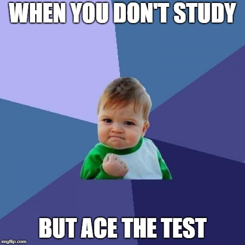Success Kid Meme | WHEN YOU DON'T STUDY BUT ACE THE TEST | image tagged in memes,success kid | made w/ Imgflip meme maker