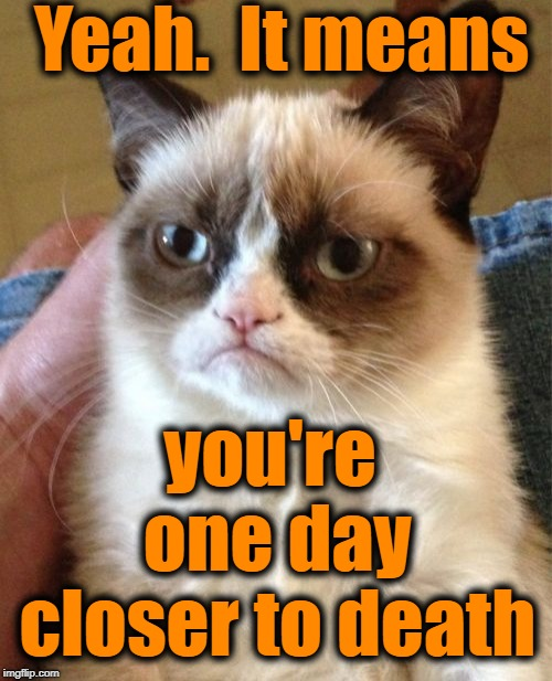 Grumpy Cat Meme | Yeah.  It means you're one day closer to death | image tagged in memes,grumpy cat | made w/ Imgflip meme maker
