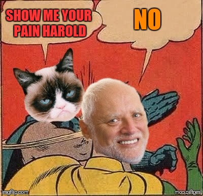Grumpy Slapping Harold | SHOW ME YOUR PAIN HAROLD NO | image tagged in memes,funny,batman slapping robin,hide the pain harold,grumpy cat,44colt | made w/ Imgflip meme maker
