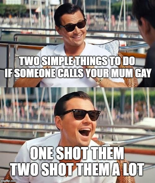 Leonardo Dicaprio Wolf Of Wall Street Meme | TWO SIMPLE THINGS TO DO IF SOMEONE CALLS YOUR MUM GAY ONE SHOT THEM TWO SHOT THEM A LOT | image tagged in memes,leonardo dicaprio wolf of wall street | made w/ Imgflip meme maker