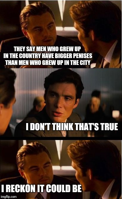 Inception Meme | THEY SAY MEN WHO GREW UP IN THE COUNTRY HAVE BIGGER P**ISES THAN MEN WHO GREW UP IN THE CITY I DON'T THINK THAT'S TRUE I RECKON IT COULD BE | image tagged in memes,inception | made w/ Imgflip meme maker
