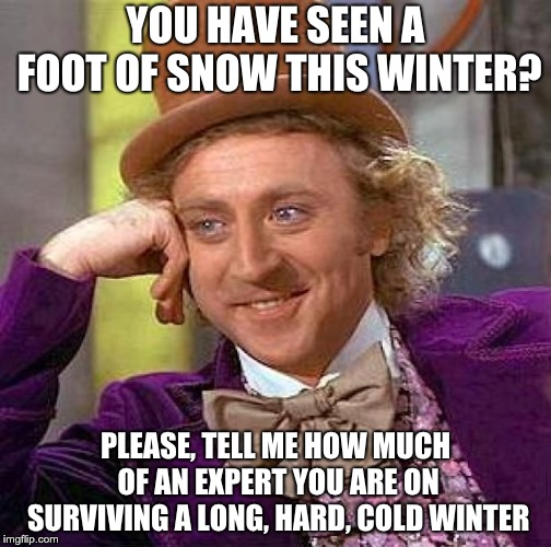 Creepy Condescending Wonka Meme | YOU HAVE SEEN A FOOT OF SNOW THIS WINTER? PLEASE, TELL ME HOW MUCH OF AN EXPERT YOU ARE ON SURVIVING A LONG, HARD, COLD WINTER | image tagged in memes,creepy condescending wonka | made w/ Imgflip meme maker