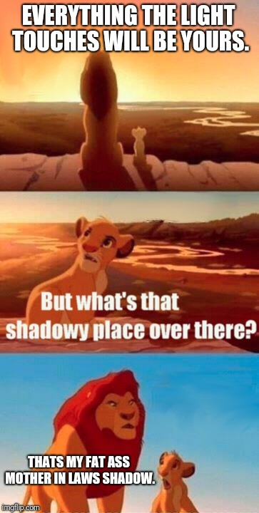 Simba Shadowy Place Meme | EVERYTHING THE LIGHT TOUCHES WILL BE YOURS. THATS MY FAT ASS MOTHER IN LAWS SHADOW. | image tagged in memes,simba shadowy place,mother in law,shadow | made w/ Imgflip meme maker