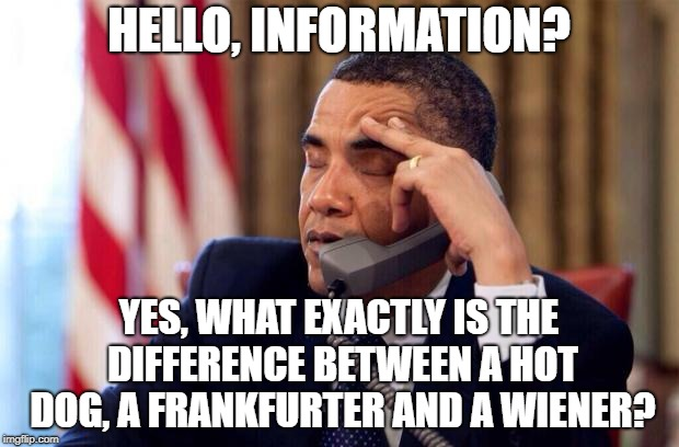 Obama Phone | HELLO, INFORMATION? YES, WHAT EXACTLY IS THE DIFFERENCE BETWEEN A HOT DOG, A FRANKFURTER AND A WIENER? | image tagged in obama phone,memes,funny,latest | made w/ Imgflip meme maker