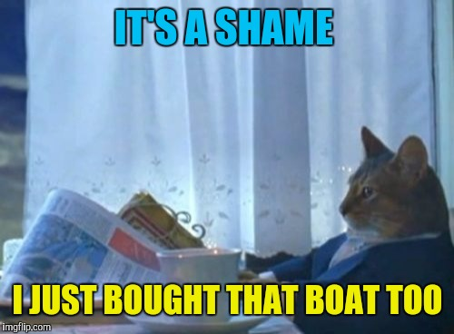 I Should Buy A Boat Cat Meme | IT'S A SHAME I JUST BOUGHT THAT BOAT TOO | image tagged in memes,i should buy a boat cat | made w/ Imgflip meme maker
