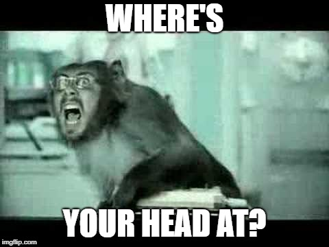 WHERE'S YOUR HEAD AT? | made w/ Imgflip meme maker