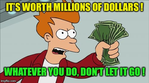 Shut Up And Take My Money Fry Meme | IT'S WORTH MILLIONS OF DOLLARS ! WHATEVER YOU DO, DON'T LET IT GO ! | image tagged in memes,shut up and take my money fry | made w/ Imgflip meme maker