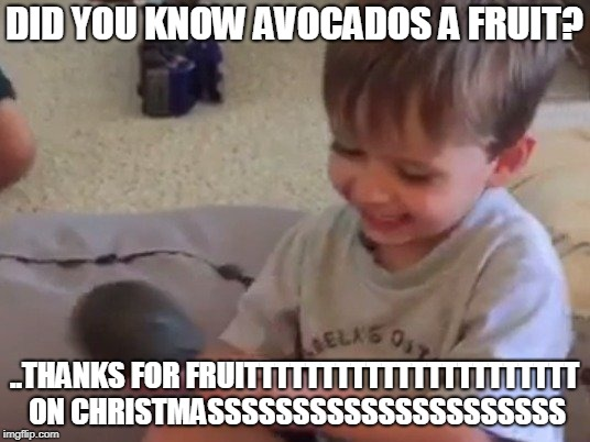 ....LOOK YOUR LEARNING. | DID YOU KNOW AVOCADOS A FRUIT? ..THANKS FOR FRUITTTTTTTTTTTTTTTTTTTTTT ON CHRISTMASSSSSSSSSSSSSSSSSSSSS | image tagged in avacado,funny,memes,merry christmas,christmas | made w/ Imgflip meme maker