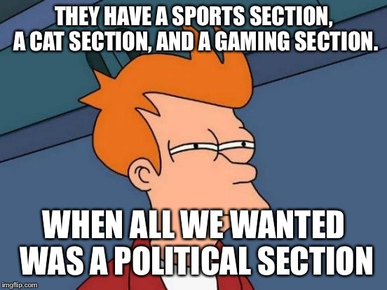 Come on imgflip get it together  | THEY HAVE A SPORTS SECTION, A CAT SECTION, AND A GAMING SECTION. WHEN ALL WE WANTED WAS A POLITICAL SECTION | image tagged in memes,futurama fry | made w/ Imgflip meme maker
