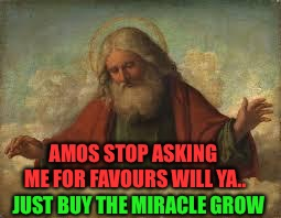 god | JUST BUY THE MIRACLE GROW AMOS STOP ASKING ME FOR FAVOURS WILL YA.. | image tagged in god | made w/ Imgflip meme maker