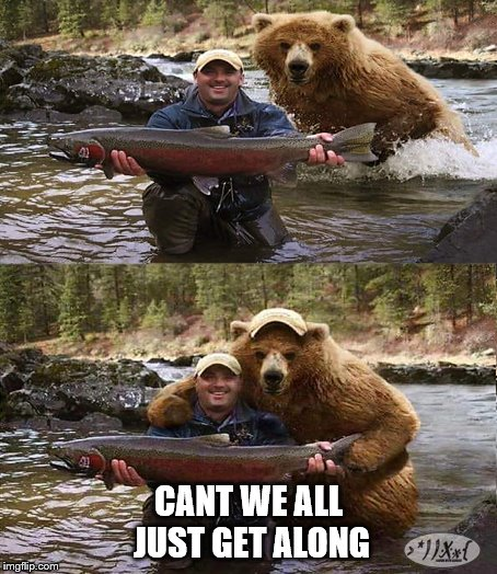 CANT WE ALL JUST GET ALONG | image tagged in fishing,bears,fantasy | made w/ Imgflip meme maker