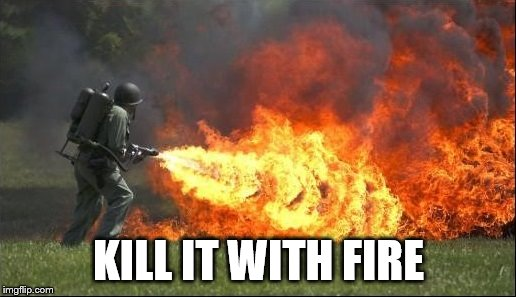 Kill it with fire | KILL IT WITH FIRE | image tagged in kill it with fire | made w/ Imgflip meme maker