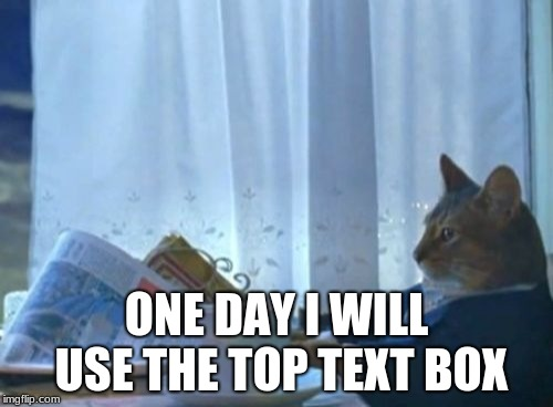 I Should Buy A Boat Cat Meme | ONE DAY I WILL USE THE TOP TEXT BOX | image tagged in memes,i should buy a boat cat | made w/ Imgflip meme maker