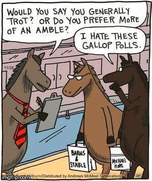 So funny | image tagged in memes,comics/cartoons,horses,polls,funny | made w/ Imgflip meme maker