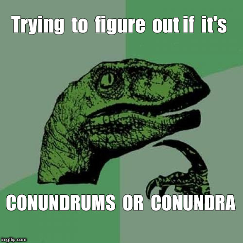 Philosoraptor Conundrum | Trying  to  figure  out if  it's CONUNDRUMS  OR  CONUNDRA | image tagged in memes,philosoraptor,conundrum,vocabulary,funny memes | made w/ Imgflip meme maker