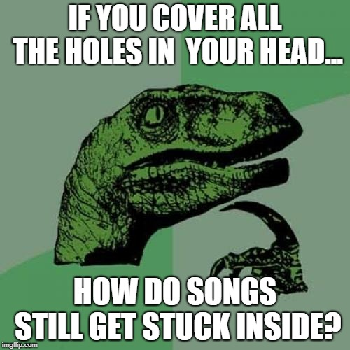 Philosoraptor Meme | IF YOU COVER ALL THE HOLES IN  YOUR HEAD... HOW DO SONGS STILL GET STUCK INSIDE? | image tagged in memes,philosoraptor | made w/ Imgflip meme maker