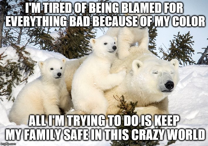 White hate | I'M TIRED OF BEING BLAMED FOR EVERYTHING BAD BECAUSE OF MY COLOR ALL I'M TRYING TO DO IS KEEP MY FAMILY SAFE IN THIS CRAZY WORLD | image tagged in racism | made w/ Imgflip meme maker