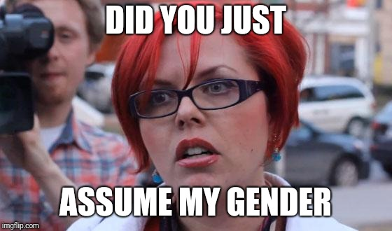 Angry Feminist | DID YOU JUST ASSUME MY GENDER | image tagged in angry feminist | made w/ Imgflip meme maker