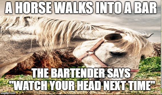 "The Horse, The Bar and The Bartender | A HORSE WALKS INTO A BAR THE BARTENDER SAYS ""WATCH YOUR HEAD NEXT TIME"" 