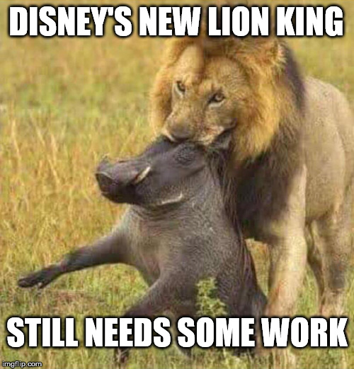 The Lion King Memes Gifs Imgflip