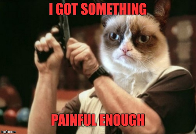 Grumpy cat | I GOT SOMETHING PAINFUL ENOUGH | image tagged in grumpy cat | made w/ Imgflip meme maker