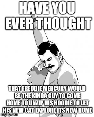 Freddie the Cat Man | HAVE YOU EVER THOUGHT THAT FREDDIE MERCURY WOULD BE THE KINDA GUY TO COME HOME TO UNZIP HIS HOODIE TO LET HIS NEW CAT EXPLORE ITS NEW HOME | image tagged in freddie mercury,queen,memes,relatable | made w/ Imgflip meme maker