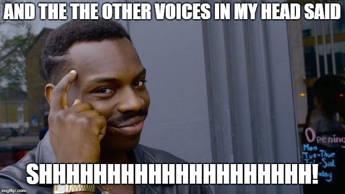 Roll Safe Think About It Meme | AND THE THE OTHER VOICES IN MY HEAD SAID SHHHHHHHHHHHHHHHHHHHH! | image tagged in memes,roll safe think about it | made w/ Imgflip meme maker