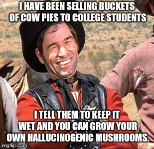 Cowboy starts hallucinogenic mushroom business. | I HAVE BEEN SELLING BUCKETS OF COW PIES TO COLLEGE STUDENTS I TELL THEM TO KEEP IT WET AND YOU CAN GROW YOUR OWN HALLUCINOGENIC MUSHROOMS. | image tagged in cowboy,hallucinogenic mushrooms,con artist,college liberal | made w/ Imgflip meme maker