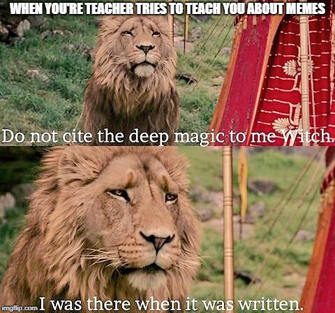 WHEN YOU'RE TEACHER TRIES TO TEACH YOU ABOUT MEMES | image tagged in aslan magic | made w/ Imgflip meme maker
