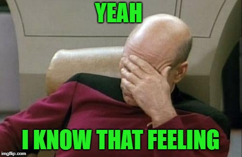 Captain Picard Facepalm Meme | YEAH I KNOW THAT FEELING | image tagged in memes,captain picard facepalm | made w/ Imgflip meme maker