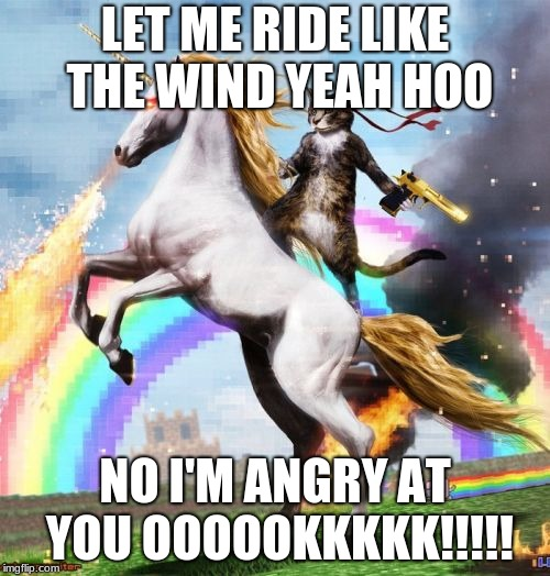 Welcome To The Internets | LET ME RIDE LIKE THE WIND YEAH HOO NO I'M ANGRY AT YOU OOOOOKKKKK!!!!! | image tagged in memes,welcome to the internets | made w/ Imgflip meme maker