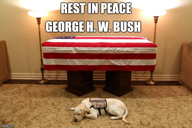 REST IN PEACE GEORGE H. W. BUSH | image tagged in george bush,presidents,memory | made w/ Imgflip meme maker