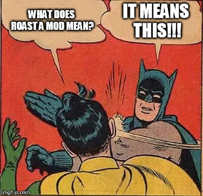 Batman Slapping Robin Meme | WHAT DOES ROAST A MOD MEAN? IT MEANS THIS!!! | image tagged in memes,batman slapping robin | made w/ Imgflip meme maker