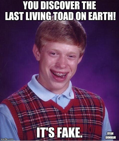 Bad Luck Brian Meme | YOU DISCOVER THE LAST LIVING TOAD ON EARTH! IT'S FAKE. RYAN DUNHAM | image tagged in memes,bad luck brian | made w/ Imgflip meme maker
