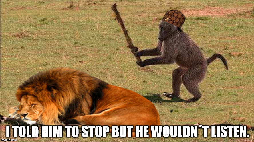 I TOLD HIM TO STOP BUT HE WOULDN´T LISTEN. | image tagged in scumbag | made w/ Imgflip meme maker