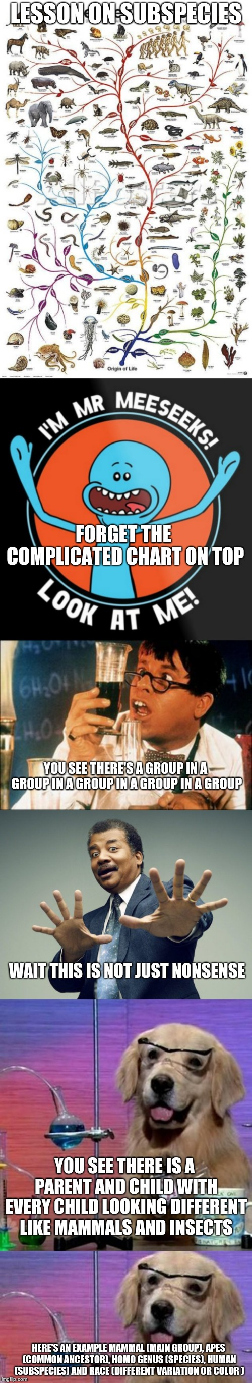 Here's a big boy (Weekly Lessons Ep 5) | LESSON ON SUBSPECIES FORGET THE COMPLICATED CHART ON TOP YOU SEE THERE'S A GROUP IN A GROUP IN A GROUP IN A GROUP IN A GROUP WAIT THIS IS NO | image tagged in memes,dj's lessons,evolution,simplified | made w/ Imgflip meme maker