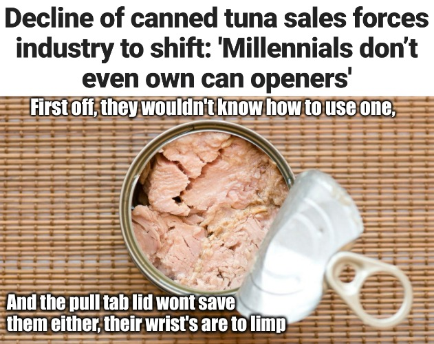 Tuna smells like Agnes | First off, they wouldn't know how to use one, And the pull tab lid wont save them either, their wrist's are to limp | image tagged in tuna,can opener,millennials,limp wristed | made w/ Imgflip meme maker