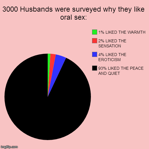 Take THAT, Masters & Johnson! | 3000 Husbands were surveyed why they like oral sex: | 93% LIKED THE PEACE AND QUIET, 4% LIKED THE EROTICISM, 2% LIKED THE SENSATION, 1% LIKE | image tagged in funny,pie charts | made w/ Imgflip chart maker
