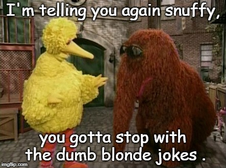 no more dumb blonde jokes snuffy.ho ho ho. | I'm telling you again snuffy, you gotta stop with the dumb blonde jokes . | image tagged in big bird and snuffy,blonde jokes,sesame street | made w/ Imgflip meme maker