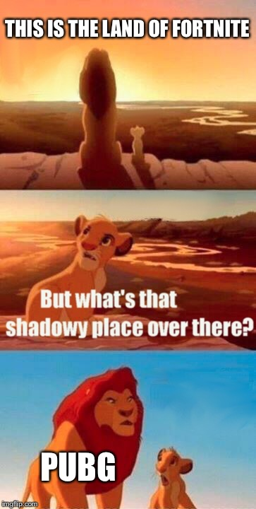 Simba Shadowy Place Meme | THIS IS THE LAND OF FORTNITE PUBG | image tagged in memes,simba shadowy place | made w/ Imgflip meme maker