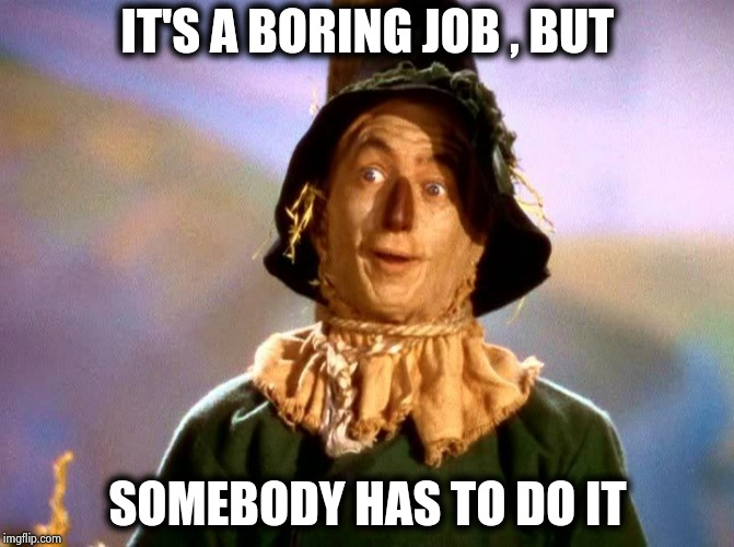 Wizard of Oz Scarecrow | IT'S A BORING JOB , BUT SOMEBODY HAS TO DO IT | image tagged in wizard of oz scarecrow | made w/ Imgflip meme maker