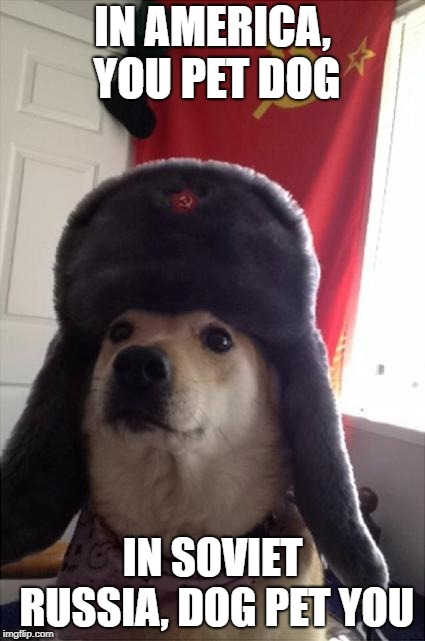 communist dog | IN AMERICA, YOU PET DOG IN SOVIET RUSSIA, DOG PET YOU | image tagged in communist dog | made w/ Imgflip meme maker