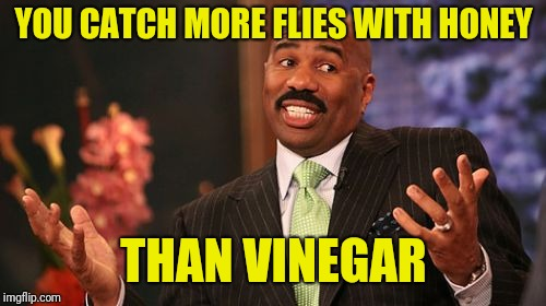 Steve Harvey Meme | YOU CATCH MORE FLIES WITH HONEY THAN VINEGAR | image tagged in memes,steve harvey | made w/ Imgflip meme maker