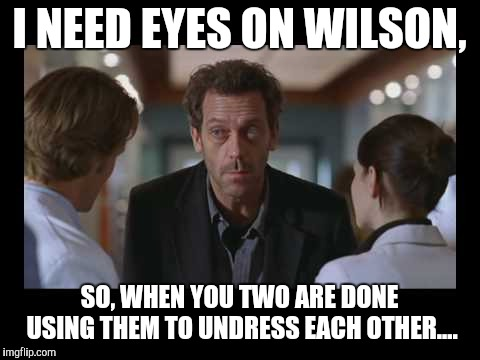 I NEED EYES ON WILSON, SO, WHEN YOU TWO ARE DONE USING THEM TO UNDRESS EACH OTHER.... | image tagged in house md | made w/ Imgflip meme maker