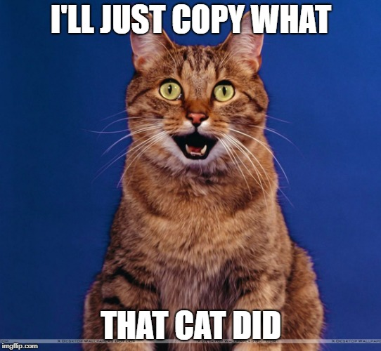 I'LL JUST COPY WHAT THAT CAT DID | made w/ Imgflip meme maker