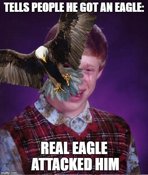 TELLS PEOPLE HE GOT AN EAGLE: REAL EAGLE ATTACKED HIM | made w/ Imgflip meme maker