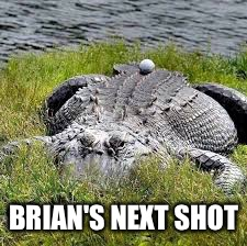 BRIAN'S NEXT SHOT | made w/ Imgflip meme maker