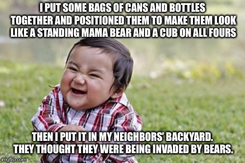 Evil Toddler Meme | I PUT SOME BAGS OF CANS AND BOTTLES TOGETHER AND POSITIONED THEM TO MAKE THEM LOOK LIKE A STANDING MAMA BEAR AND A CUB ON ALL FOURS THEN I P | image tagged in memes,evil toddler | made w/ Imgflip meme maker